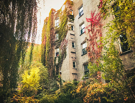 New York City Autumn East Village by Vivienne Gucwa
