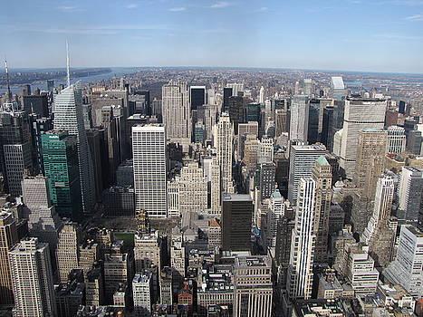 New York City Horizon by Peter Aiello