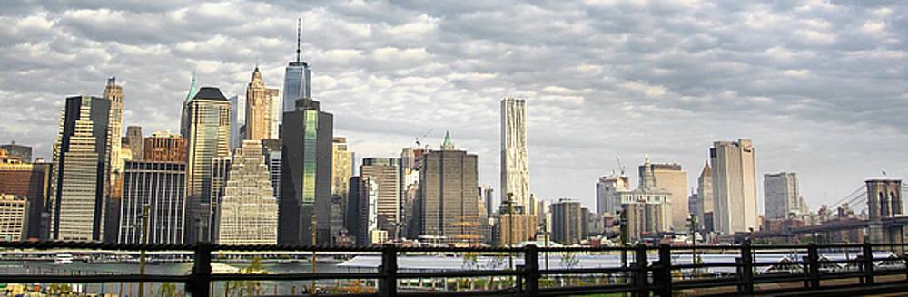 Judy Hall-Folde - New York City