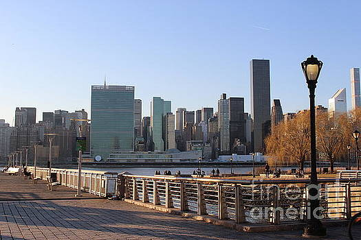 New York's Skyline - A View from Gantry Plaza State Park by Dora Sofia Caputo Photographic Art and Design