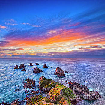 New Zealand Beauty by Colin and Linda McKie