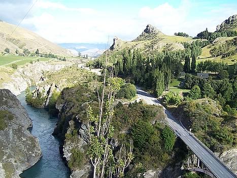 New Zealand Scene by Constance DRESCHER