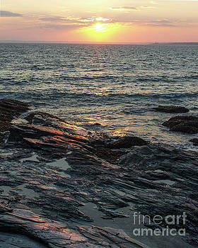 Newport Sunset 2 by Cheryl Del Toro