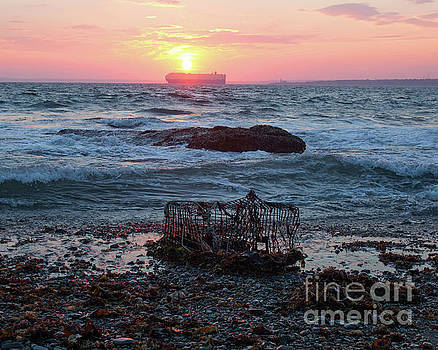 Newport Sunset Lobster Crate by Cheryl Del Toro