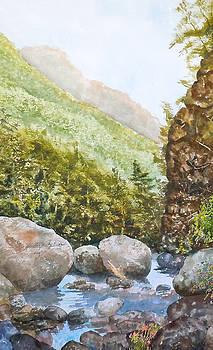 NH Notch Stream by Harding Bush