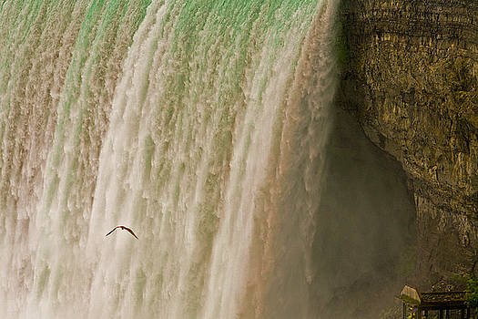 Chuck Kuhn - Niagara Falls