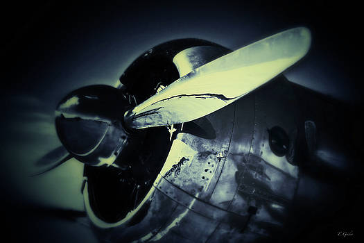 Warbird by Tony Grider