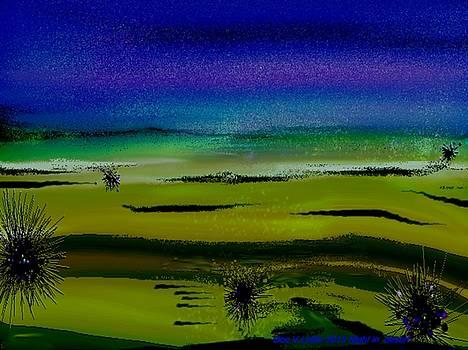 Night in desert by Dr Loifer Vladimir