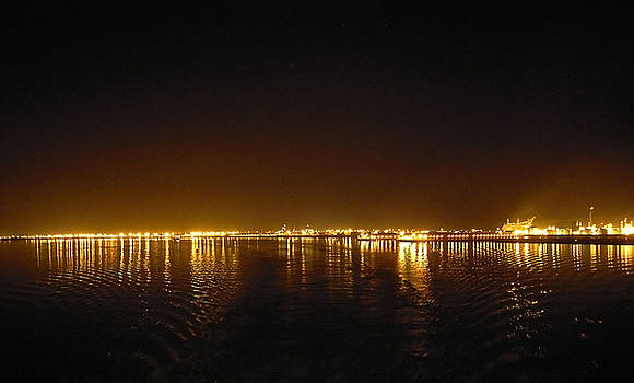 Svetlana Sewell - Night Lights