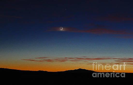 Night lite by Wesley Hahn