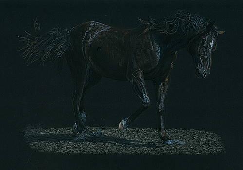 Night Mare by Laura Klassen