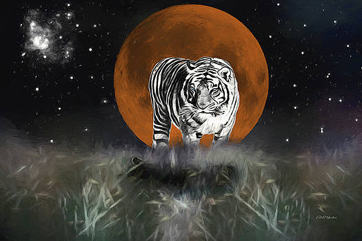 Night of the Tiger by Ericamaxine Price