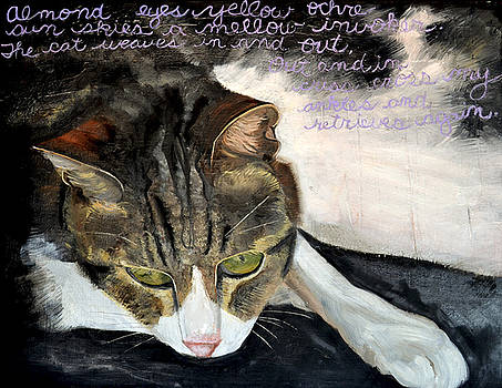Night Our Cat by Shira Chai