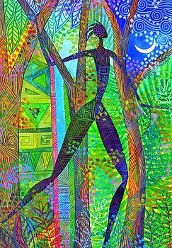 Night Quest by Jennifer Baird