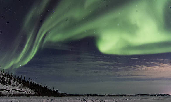 Night Skies by Valerie Pond