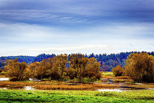 Barry Jones - Nisqually Refuge Wetlands and Marsh