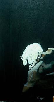 No fear by Jean Yves Crispo