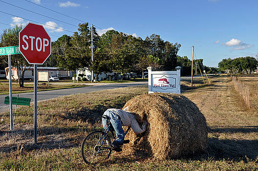 No Stop On Red Barn Road by David Dittmann