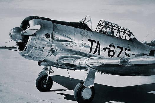 North American Aviation T-6 Texan Monochrome Plane by Tony Grider