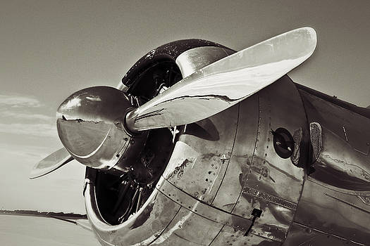 North American Aviation T-6 Texan Plane in Sepia by Tony Grider