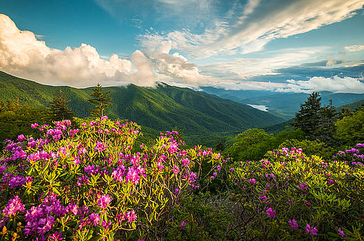 North Carolina Blue Ridge Parkway Spring Mountains Scenic Landscape by Dave Allen