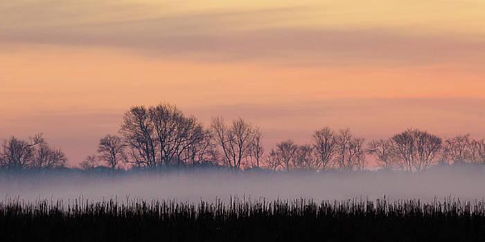 North Carolina Dawn - Sunrise on the Refuge Panorama Crop by Bill Swindaman