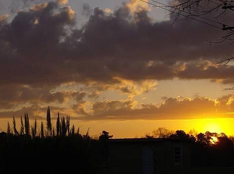 North Carolina Sunrise by Linda Bennett