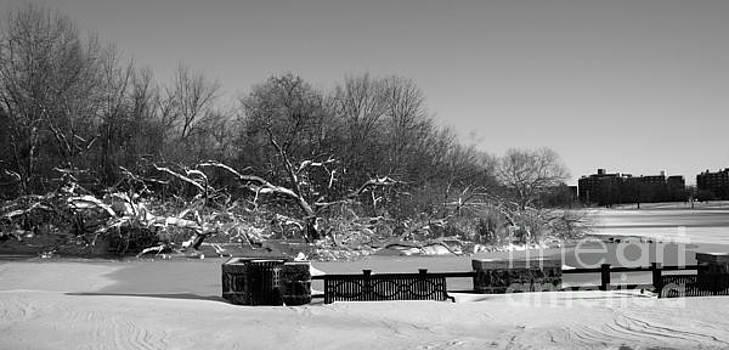 North Hudson Park Lake in Winter by Lilliana Mendez