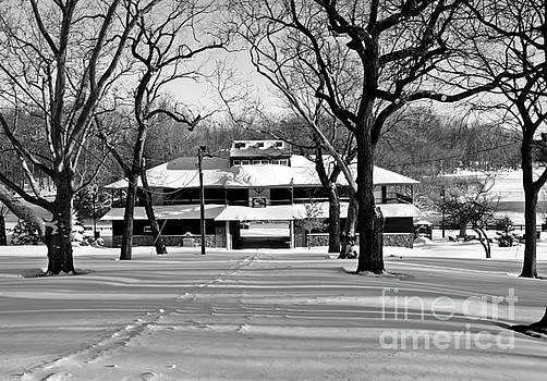 North Hudson Park Winter by Lilliana Mendez