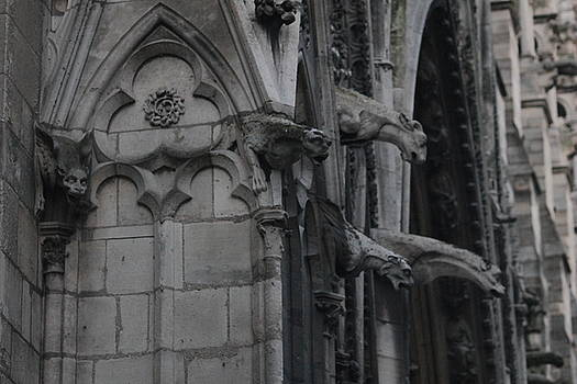 North Side Notre Dame Cathedral by Christopher Kirby