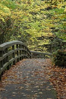 Northern Bridge by Gary Zimmerman
