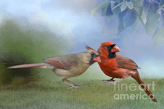 Northern Cardinals on a Spring Day by Bonnie Barry