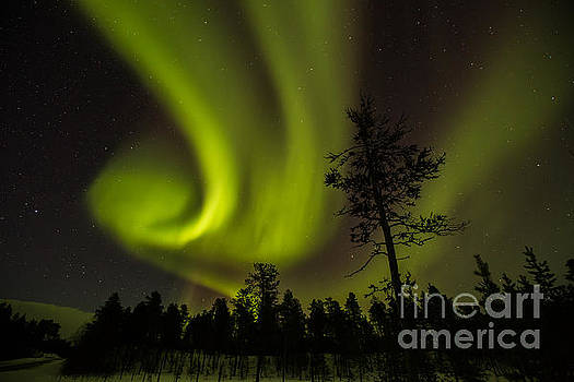 Northern light in Finland by Gabor Pozsgai