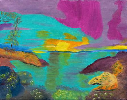 Northern Lights Brilliance by Meryl Goudey