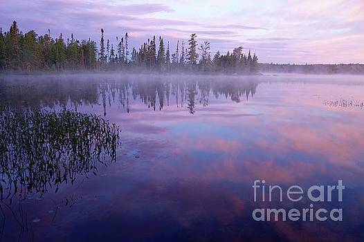 Northern Morning Beauty by Sandra Updyke