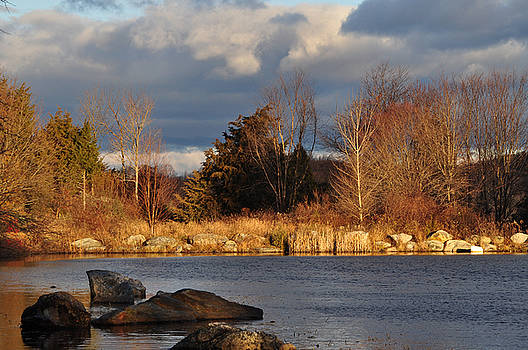 Northern Pond by Peter  McIntosh