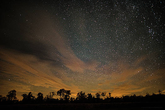 Northern Sky at Night by Phil Abrams