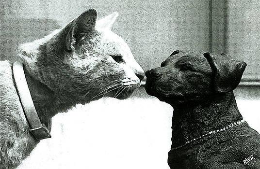 Not Afraid of Dogs by Alejandro Tovar