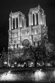 Notre Dame at Night by Luca Diana
