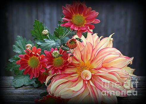 November  Flowers - Still Life by Dora Sofia Caputo Photographic Art and Design