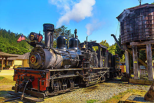 Number Seven Locomotive by Garry Gay