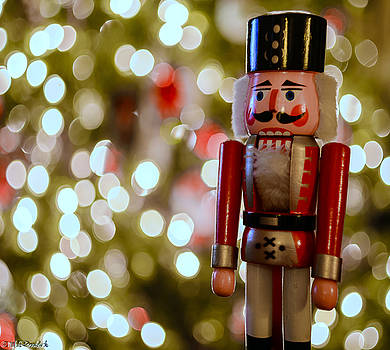 Nutcracker by Mike Ronnebeck