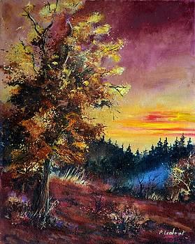 Oak at sunset by Pol Ledent