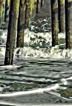 Ocean Dreams by Marian Palucci-Lonzetta