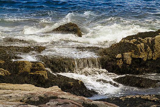 Ocean Fall by Belinda Dodd