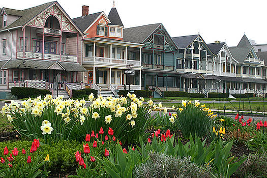 Ocean Grove Victorians in Spring by Kelly S Andrews