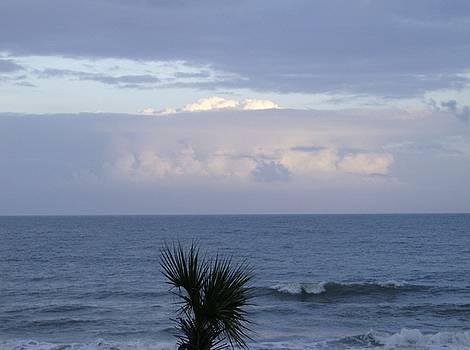 Ocean Sunset by Linda Bennett