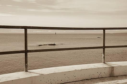Marilyn Wilson - Ocean View - Sepia