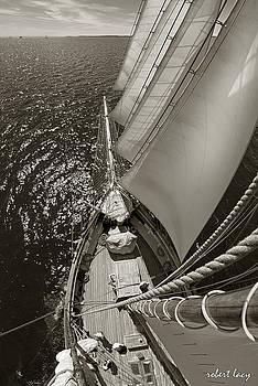 Robert Lacy - Ocean View