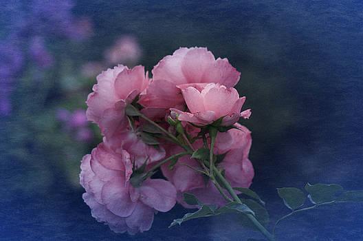 October 2016 Roses No. 2 by Richard Cummings